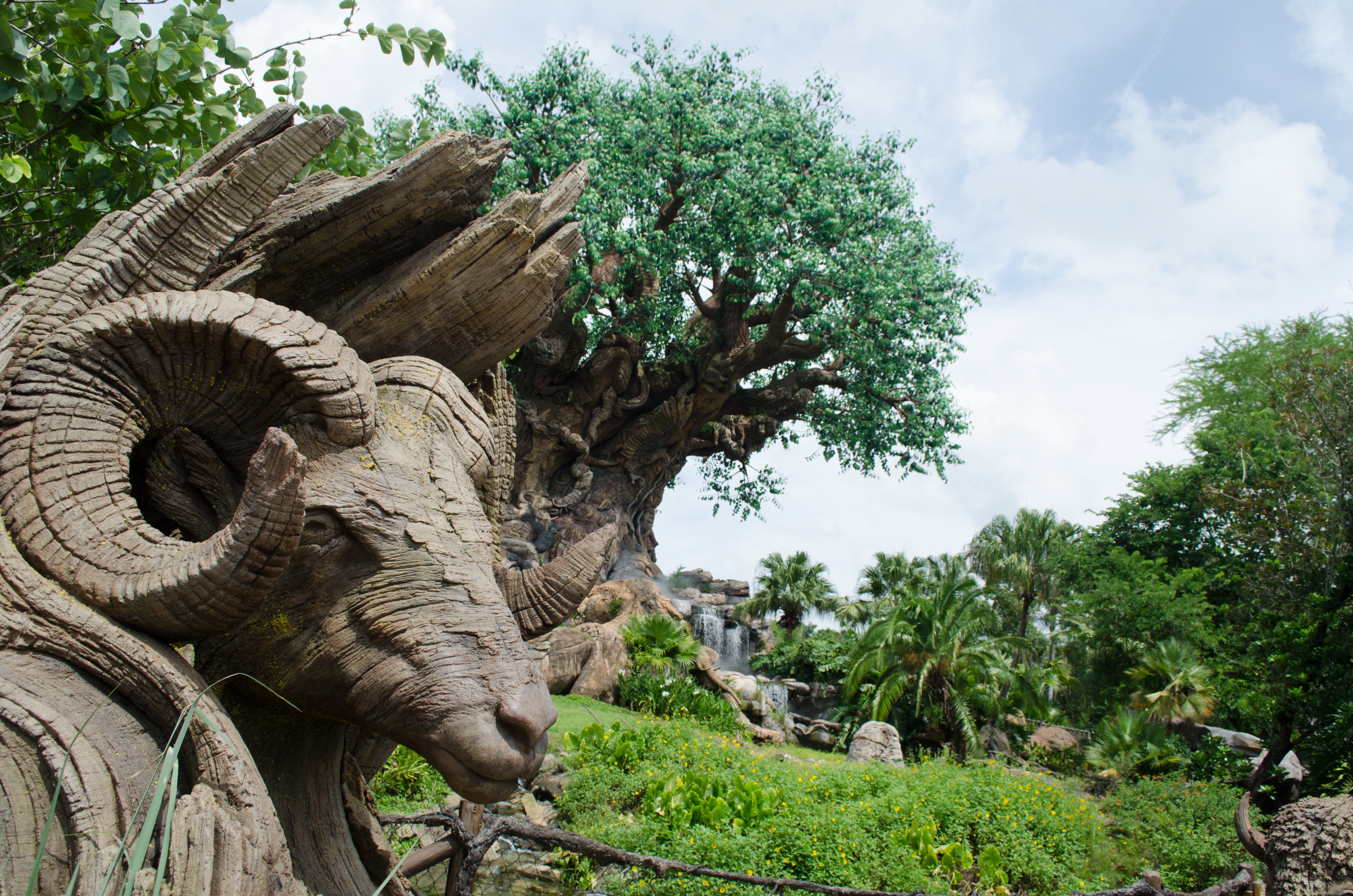 AnimalKingdom_08292015-5