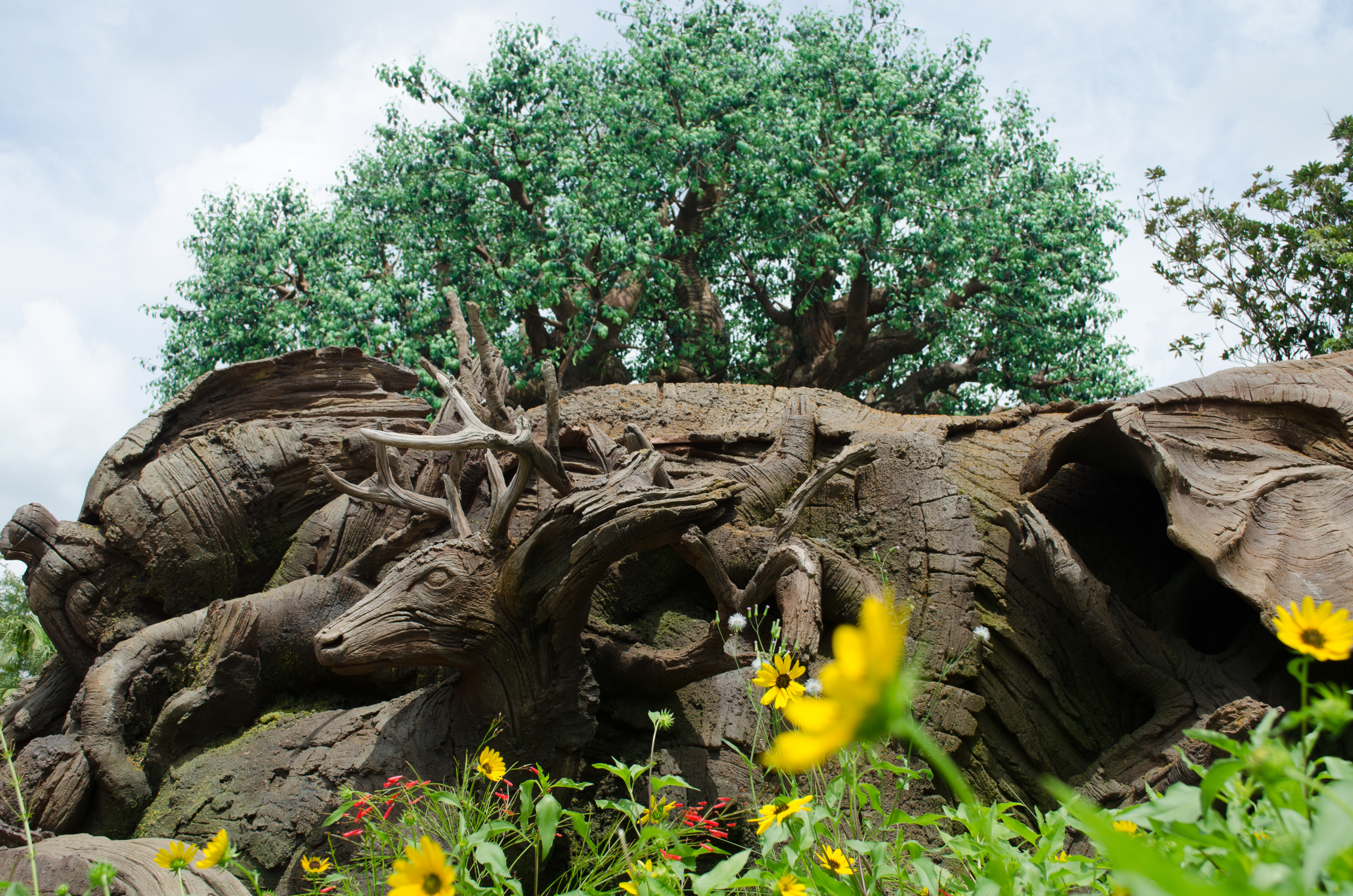 AnimalKingdom_08292015-6