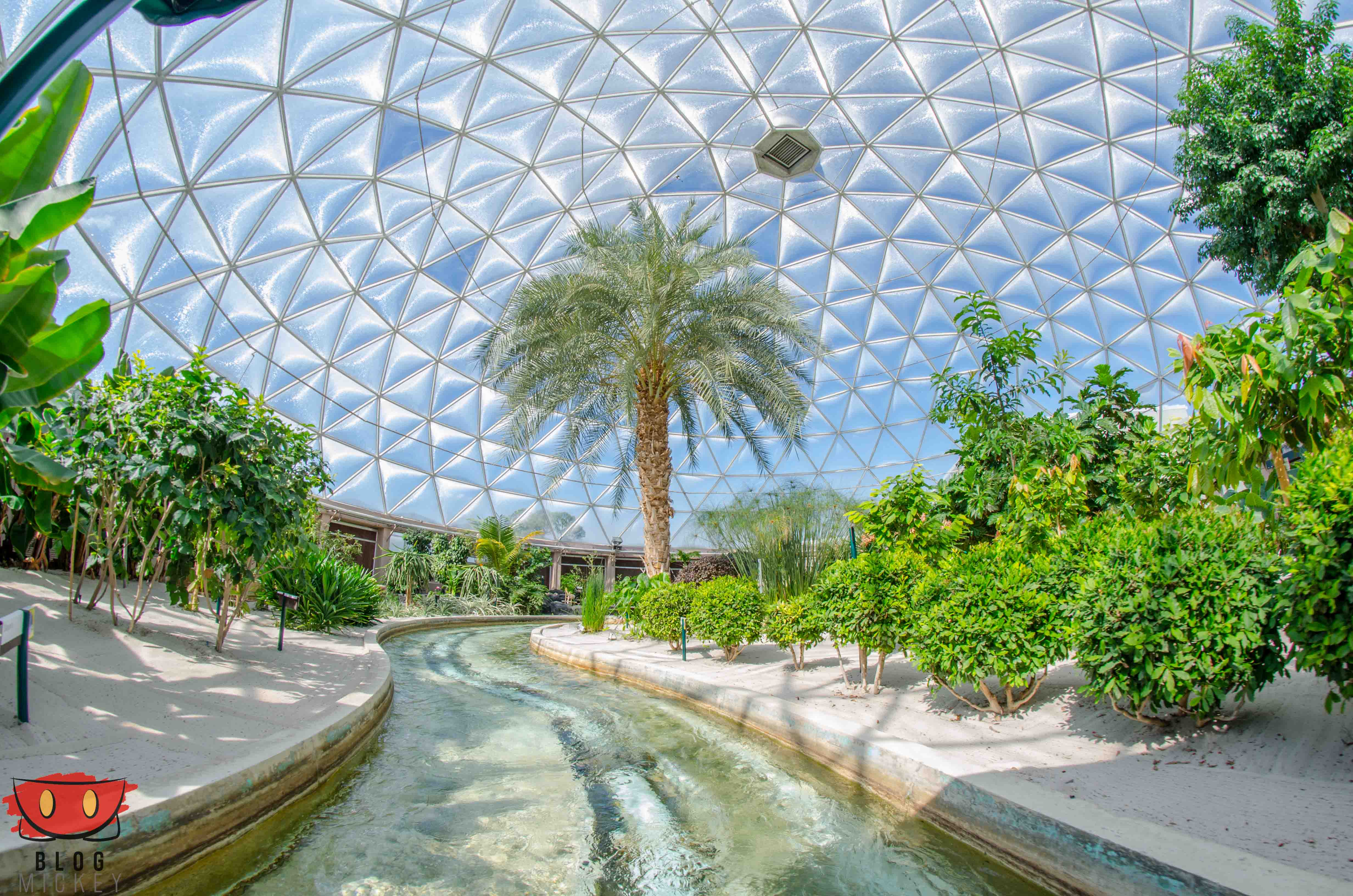 EpcotPhotoUpdate_02102016-7