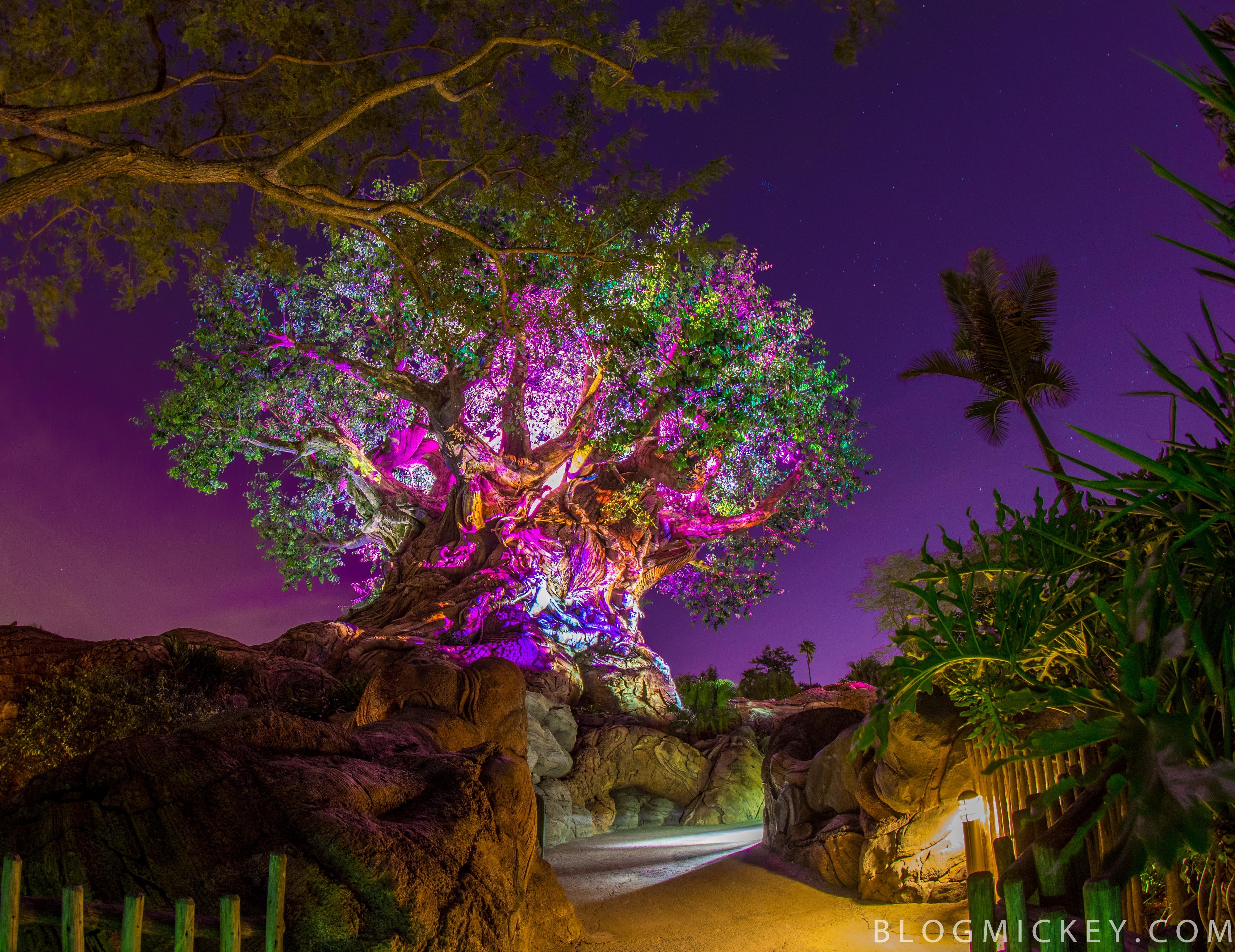 After dark tree of life garden after dark blog mickey for Trees garden of jane delawney blogspot