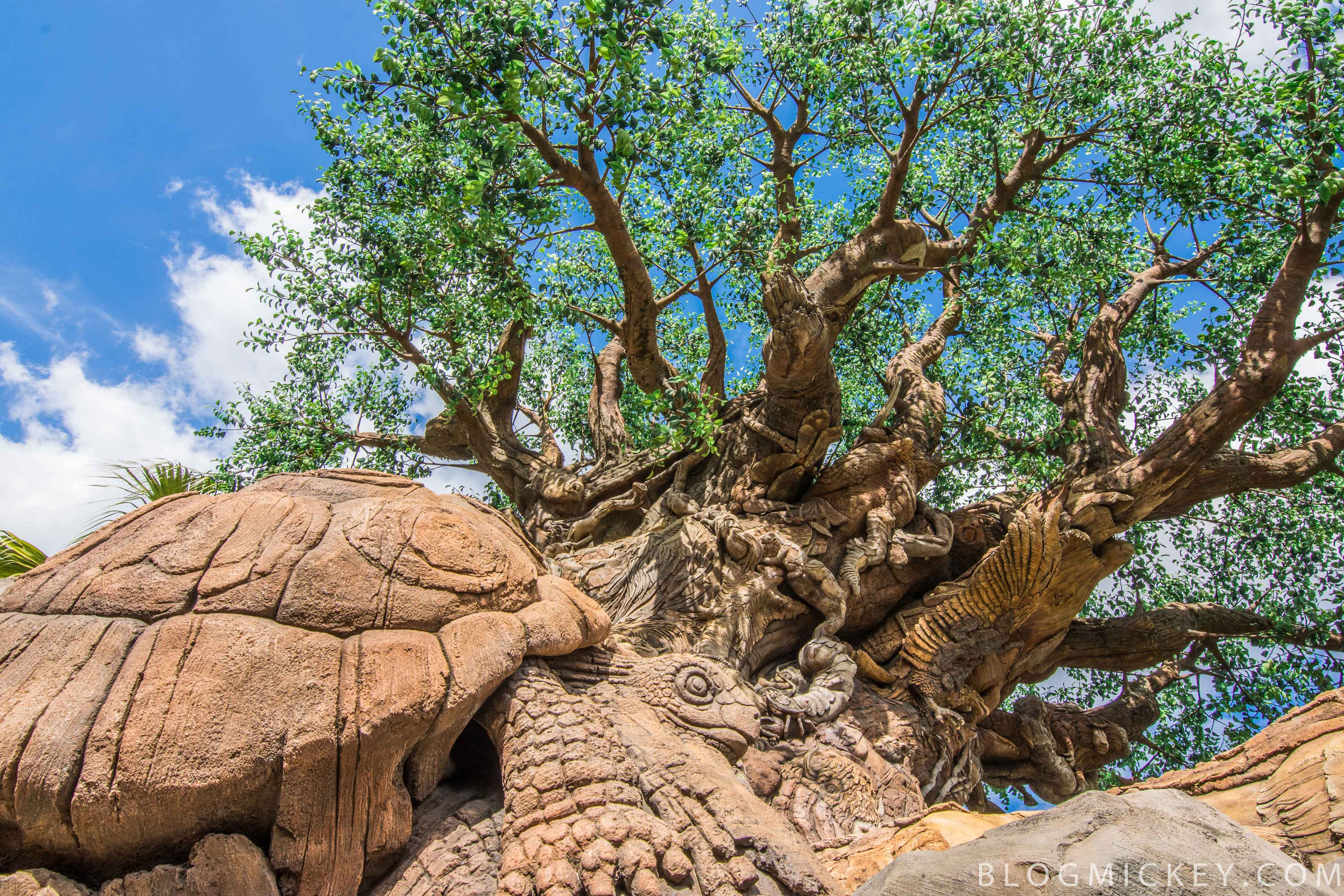 Photos tree of life garden reopens blog mickey for Trees garden of jane delawney blogspot