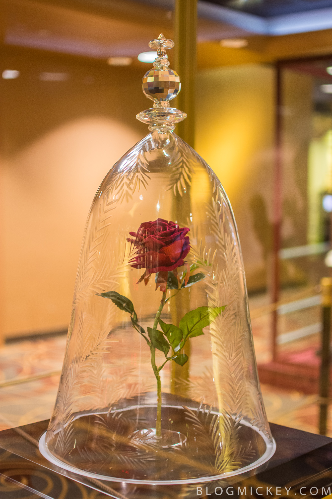 Photos video beauty and the beast preview at one mans dream in addition to the props guests can watch a 9 minute preview from the film in the theater nearby the preview includes the full version of the song belle izmirmasajfo