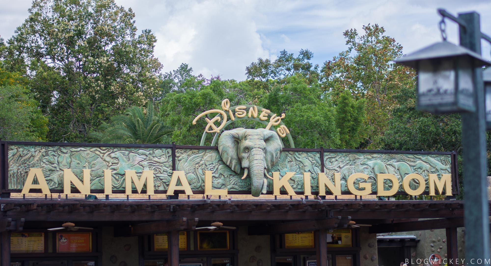 Disney\'s Animal Kingdom Honors Two Decades of Wild Encounters With ...