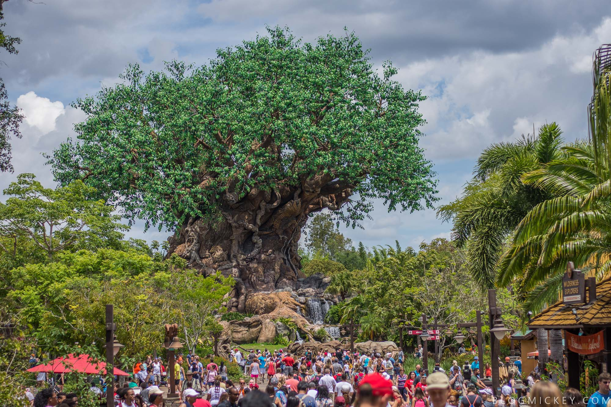 Adjusted Animal Kingdom Park Hours Go Into Effect From ...