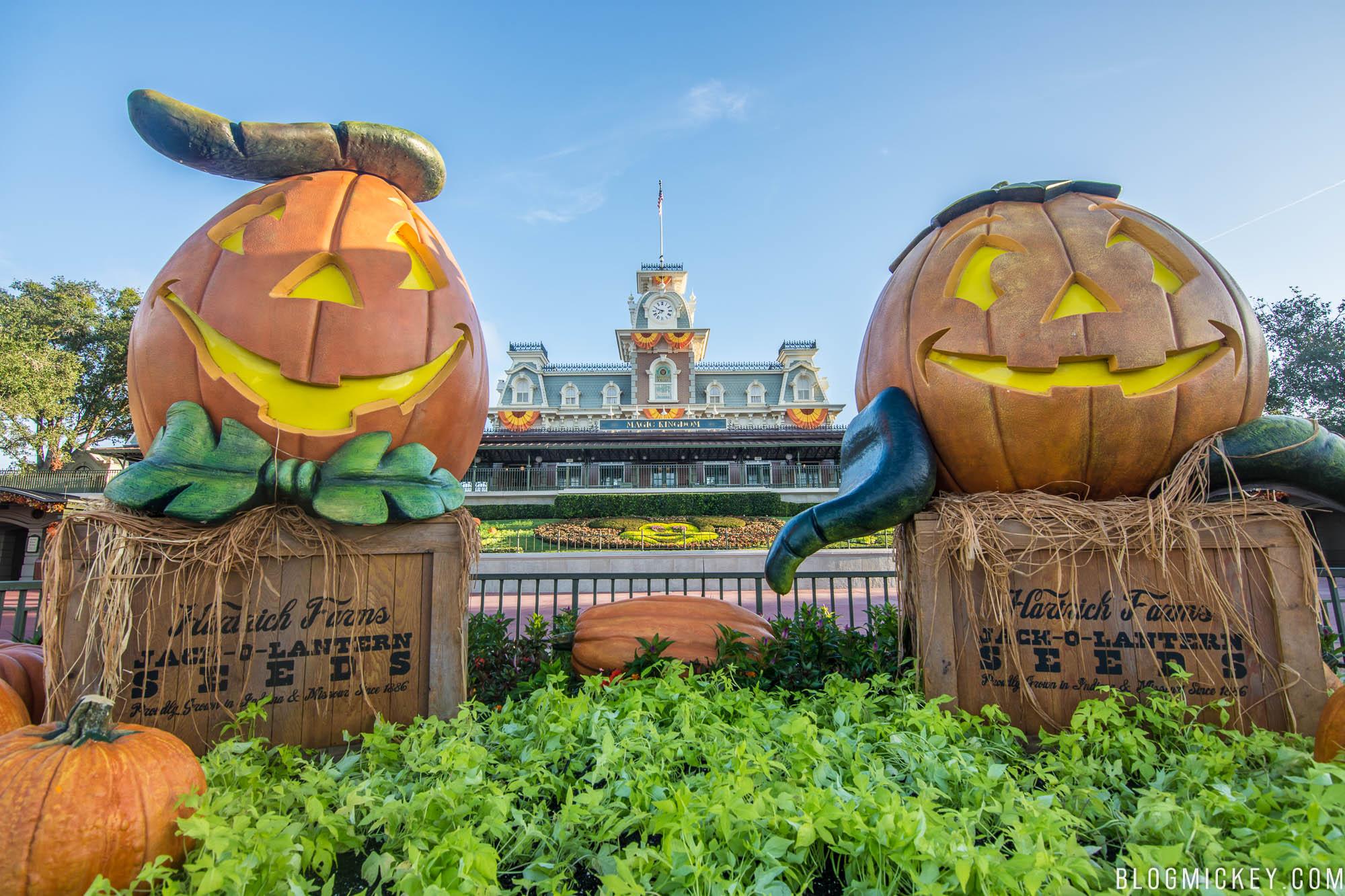 PHOTOS: Halloween Decorations Appear on Main Street USA - Blog Mickey