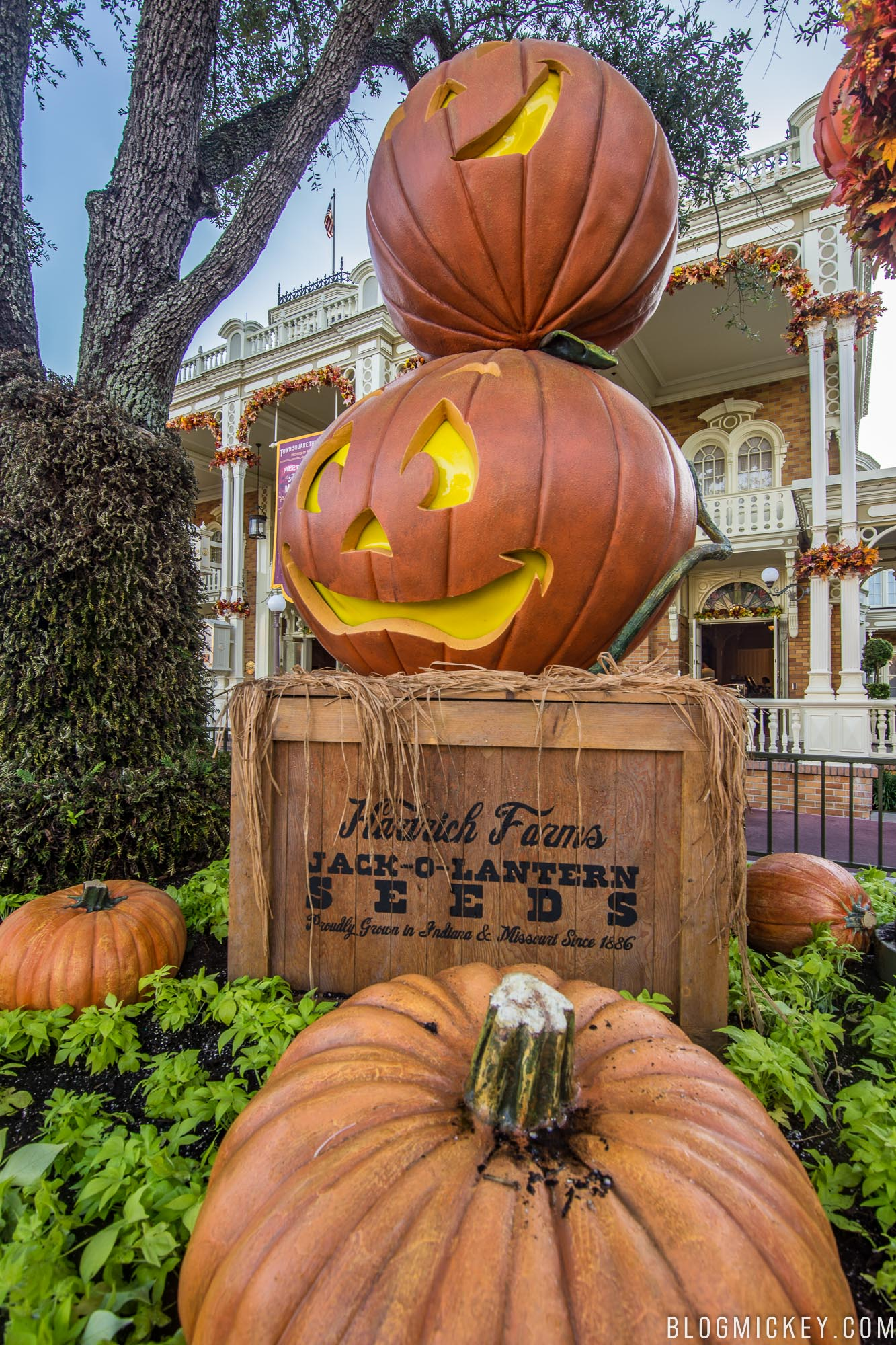 Photos Halloween Decorations Appear On Main Street Usa