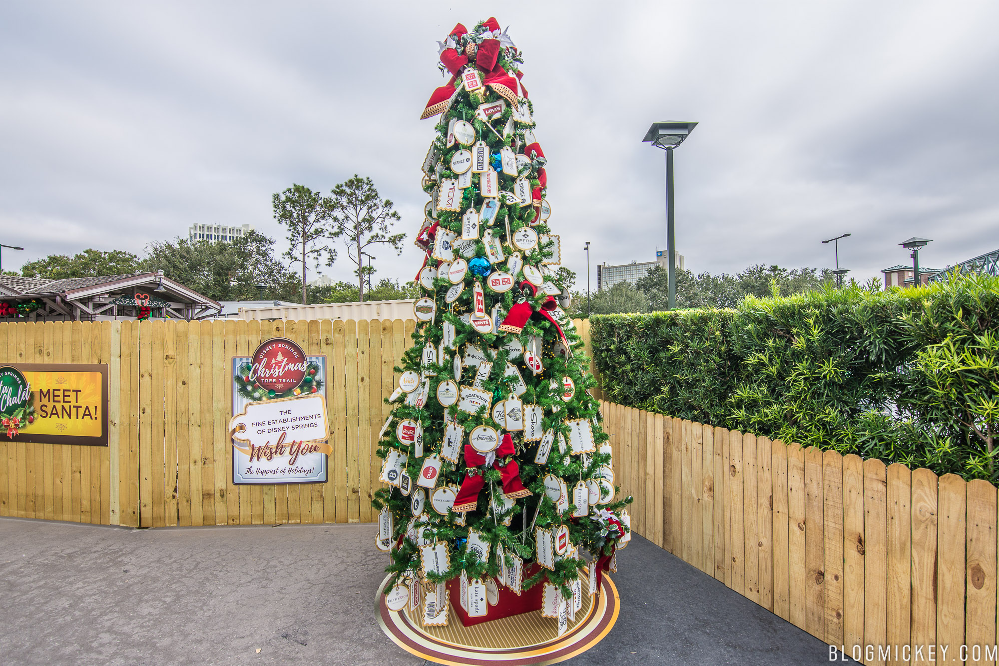 heres a daytime look at all of the trees - Disney Christmas Trees