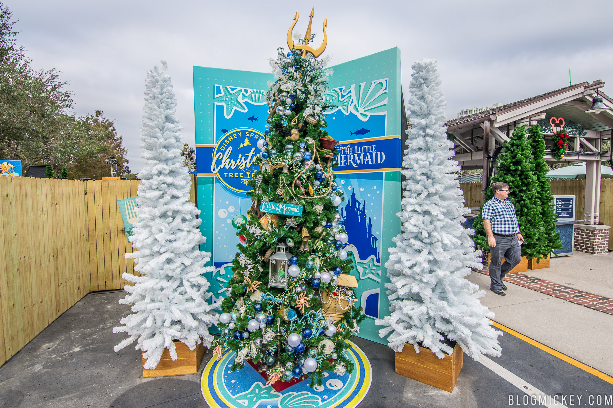 heres a daytime look at all of the trees - Disney Christmas Tree