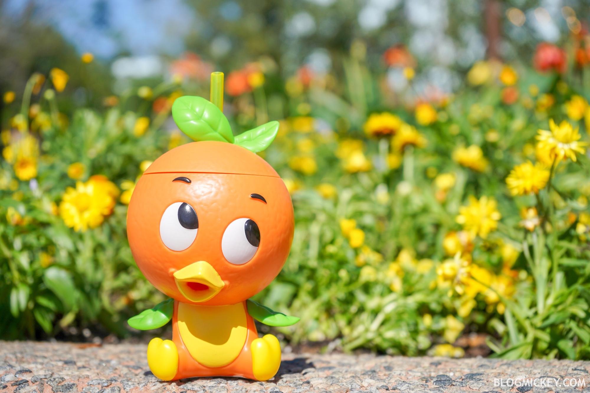 photos: orange bird sipper debuts at 2019 epcot flower and garden