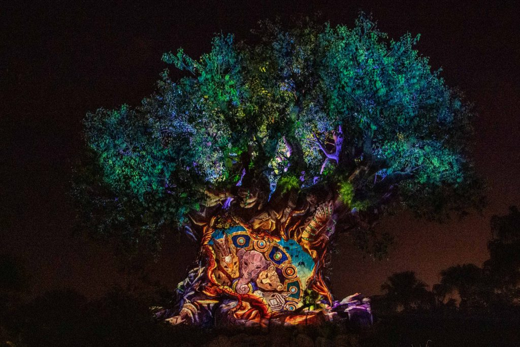 The Lion King Tree Of Life Awakening Debuts At Disney S Animal Kingdom